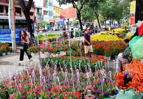 Du khách nước ngoài ngẩn ngơ trước rừng hoa bán Tết ở TP.HCM - ảnh 1