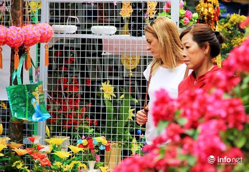 Du khách nước ngoài ngẩn ngơ trước rừng hoa bán Tết ở TP.HCM - ảnh 14