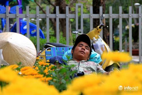 Du khách nước ngoài ngẩn ngơ trước rừng hoa bán Tết ở TP.HCM - ảnh 5