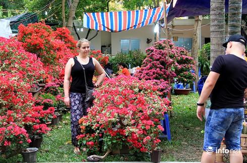 Du khách nước ngoài ngẩn ngơ trước rừng hoa bán Tết ở TP.HCM - ảnh 7