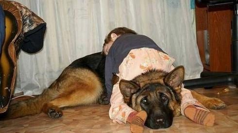 Cười ngặt nghẽo với các tư thế ngủ chỉ có ở trẻ em - ảnh 20