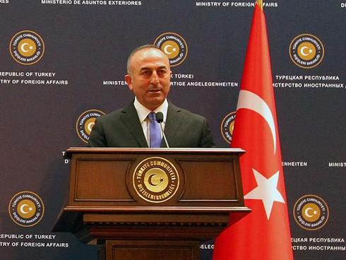Thổ Nhĩ Kỳ đề nghị Nga hủy bỏ trừng phạt kinh tế - ảnh 1