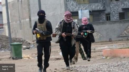 Tình hình Syria mới nhất ngày 1/2 - ảnh 1
