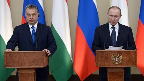 """Nga - Hungary """"quên lãng"""" cấm vận, thúc đẩy hợp tác - ảnh 1"""