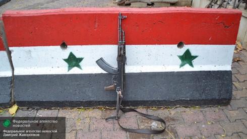 Tình hình Syria mới nhất ngày 29/4 - ảnh 3