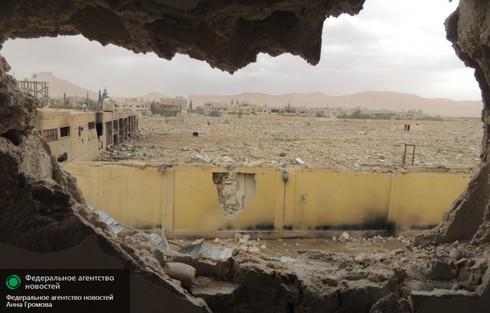 Tình hình Syria mới nhất ngày 4/5 - ảnh 2