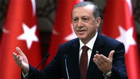 """Tổng thống Erdogan phê chuẩn dự án """"Dòng chảy Thổ Nhĩ Kỳ"""" - ảnh 1"""