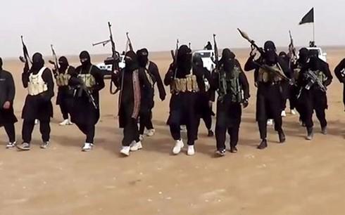 Tình hình Syria 24/1: Mỹ từ chối phối hợp không kích IS ở Syria với Nga - ảnh 3