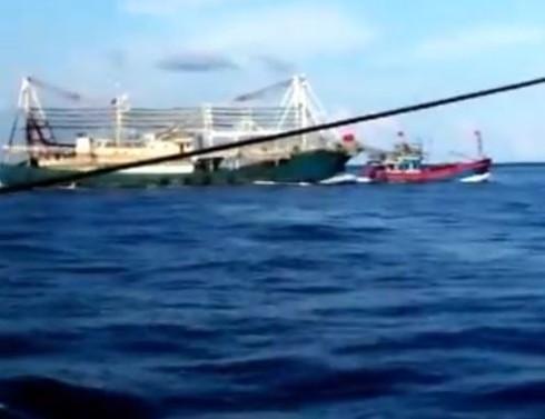 Chấn động: Clip quay cảnh tàu TQ tàn bạo, đâm chìm tàu cá Việt Nam - ảnh 3