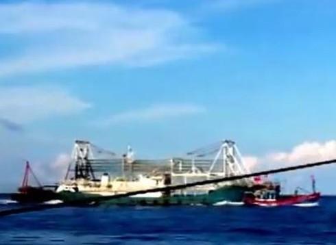 Chấn động: Clip quay cảnh tàu TQ tàn bạo, đâm chìm tàu cá Việt Nam - ảnh 5