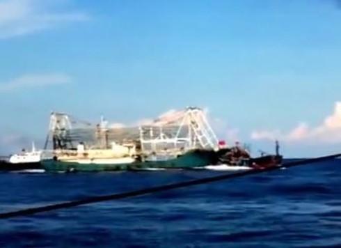 Chấn động: Clip quay cảnh tàu TQ tàn bạo, đâm chìm tàu cá Việt Nam - ảnh 7