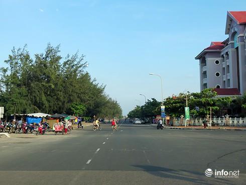 Hoài niệm buồn về những rừng dương đã mất ở ven biển Đà Nẵng - ảnh 9