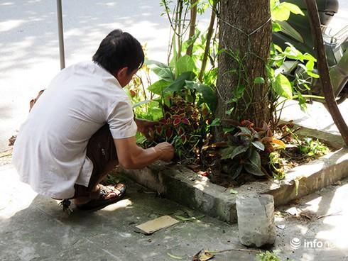 """Đà Nẵng: Những cảnh tượng làm mất mặt """"thành phố đáng sống""""! - ảnh 2"""