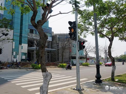 Đà Nẵng: Người dân lạ lẫm với đèn tín hiệu dành cho người đi bộ qua đường - ảnh 1