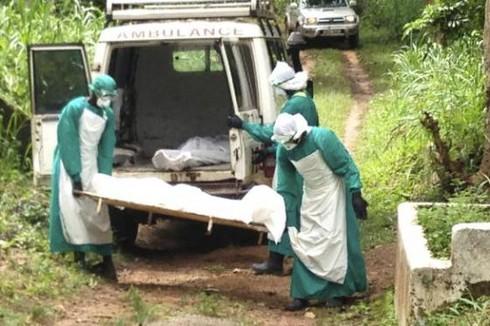Bộ Y tế đưa ra kế hoạch đối phó đại dịch Ebola nếu vào Việt Nam - ảnh 1