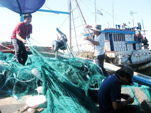 Đà Nẵng: 100% ngư dân tàu cá 50CV trở lên đã được mua bảo hiểm