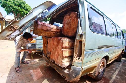 Shop TIN 21/8: Thủ tướng: Kiên quyết đóng cửa rừng để cứu rừng - ảnh 2