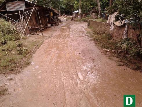 Shop TIN 21/8: Thủ tướng: Kiên quyết đóng cửa rừng để cứu rừng - ảnh 17