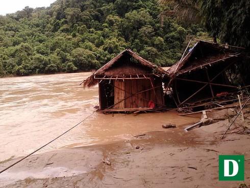 Shop TIN 21/8: Thủ tướng: Kiên quyết đóng cửa rừng để cứu rừng - ảnh 14