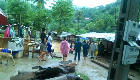 Shop TIN 21/8: Thủ tướng: Kiên quyết đóng cửa rừng để cứu rừng - ảnh 18