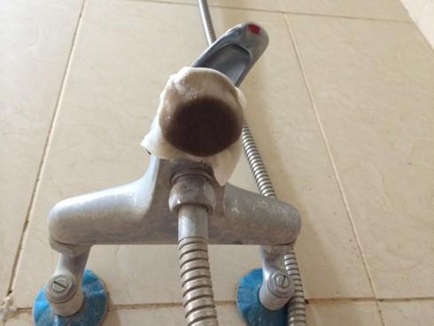 Hà Nội: Hãi hùng nước sạch có giun, bọ bơi tung tăng - ảnh 3