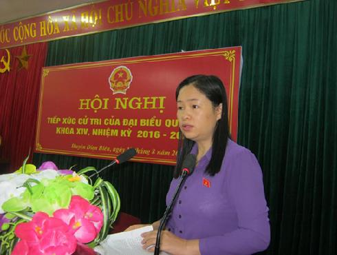 Hội Liên hiệp Phụ nữ tỉnh Điện Biên: Quyết liệt đưa Nghị quyết XII vào cuộc sống - ảnh 1