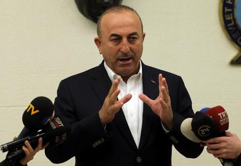 Vì sao Hà Lan cấm máy bay của Ngoại trưởng Thổ Nhĩ Kỳ hạ cánh? - ảnh 1