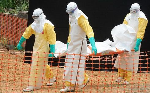 Hai ngày thêm 56 người tử vong do bệnh Ebola - ảnh 1