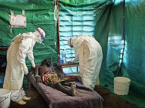 Thêm 113 người mắc Ebola, 84 người tử vong - ảnh 1