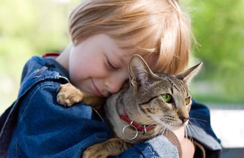 Coi chừng tử vong khi chơi với mèo - ảnh 1