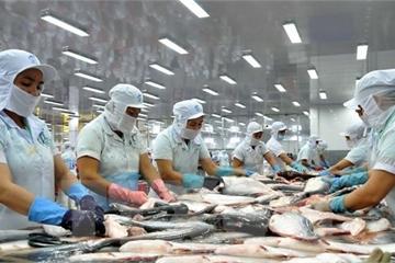 Tìm cơ hội xuất khẩu hàng hóa sau đại dịch