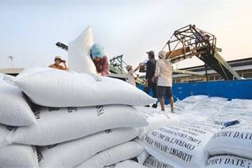 """Lùm xùm vụ xuất khẩu 400.000 tấn gạo: Bộ Tài chính """"nhờ"""" Bộ Công an điều tra"""