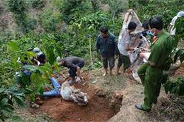 Công an Hà Nội điều tra nghi án chồng giết vợ, phi tang xác