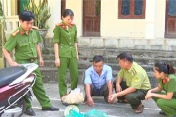 Mua bán động vật hoang dã, người đàn ông bị phạt 20 triệu đồng