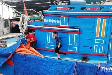 """Nghệ An: Vụ đánh bắt cá nam gặp khó, ngư dân lo """"sốt vó"""" khi tàu nằm bờ"""