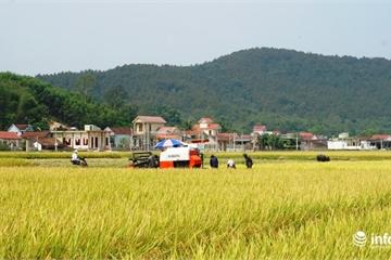 Dấu ấn trong 10 năm xây dựng nông thôn mới ở Nghệ An