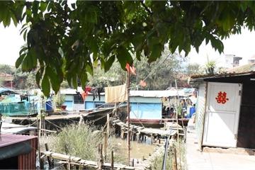 Xóm chài trên sông Tam Bạc: Buồn vui trước lúc 'lên bờ'