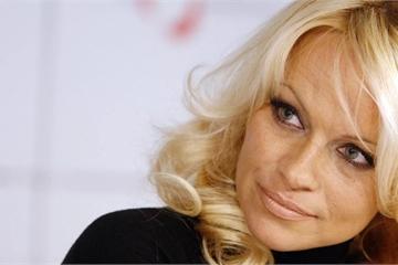 Nhà hoạt động xã hội Pamela Anderson viết gì trong thư gửi Tổng thống Putin?