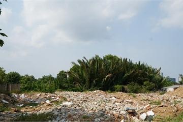 Bắt 2 cựu lãnh đạo Công ty Tân Thuận liên quan đến sai phạm đất đai