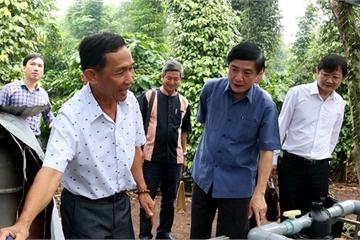Đắk Lắk: Nâng cao hiệu quả sản xuất của các hợp tác xã