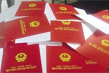 Đắk Nông: Quản đốc dùng 'chiêu lạ' chiếm đoạt tiền tỷ của nhiều người dân