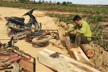 Đắk Lắk: Tạm giữ 7 đối tượng khai thác gỗ lậu đánh trọng thương kiểm lâm