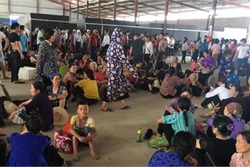 """Video: Về tham dự Vesak, hàng nghìn người """"khóc thét"""" ở chùa Tam Chúc"""