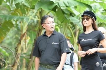 Ngôi sao Hollywood Maggie Q nhận bảo trợ gấu tại Việt Nam