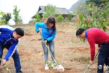 Phát động Tết trồng cây Xuân Canh Tý 2020 tại Sơn La