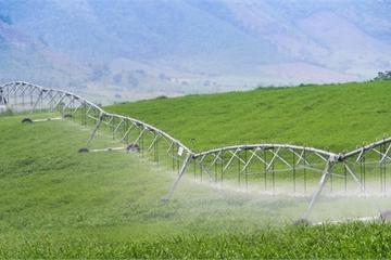"""Phát triển nông nghiệp bền vững: Từ cây xanh tới """"vàng xanh"""""""