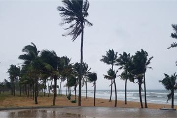 Phú Quốc: Đang đi dạo biển, du khách hoảng hốt phát hiện thi thể dạt vào bờ