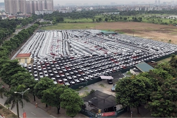 Ô tô nhập ngày càng nhiều, giá vẫn cao và không có xe rẻ