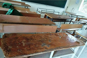 Gần 1.000 học sinh Mường Lát phải ngồi ghép vì thiếu bàn ghế