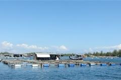 Nơi những con sóng vỗ bờ (P3): Khánh Hòa